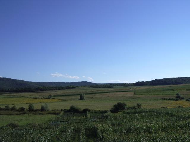 Autre aspect de la plaine méridionale