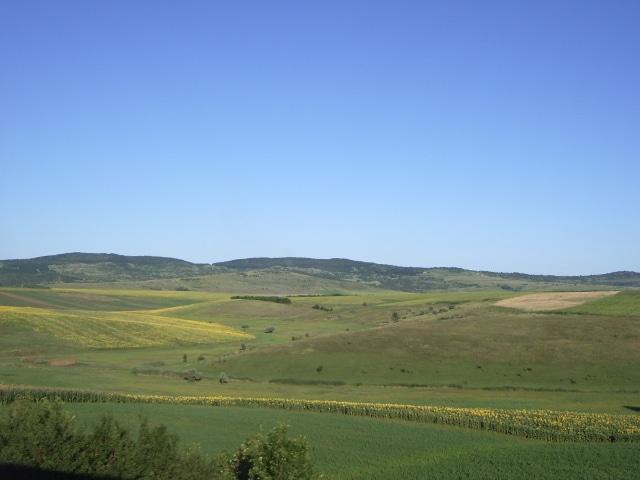 Paysage moldave dans la plaine méridionale